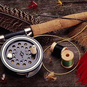 Охотничьи и рыболовные магазины Парголово