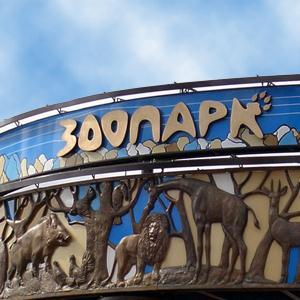 Зоопарки Парголово